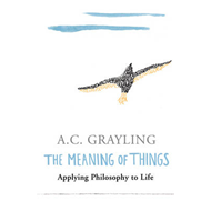 Meaning of Things (BOK)