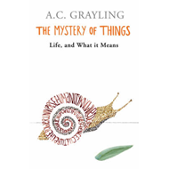 The Mystery of Things (BOK)
