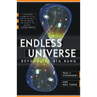 Endless Universe: Beyond the Big Bang (BOK)