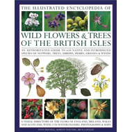 Illustrated Encyclopedia of Wild Flowers and Trees of the British Isles: an Authoritative Guide to 6 (BOK)