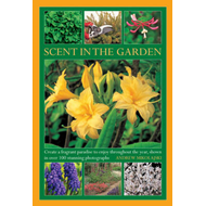 Scent in the Garden: Create a Fragrant Paradise to Enjoy Throughout the Year, Shown in 100 Stunning (BOK)