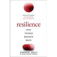 Resilience: Why Things Bounce Back (BOK)