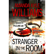 Stranger in the Room (BOK)