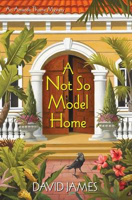 Not So Model Home (BOK)