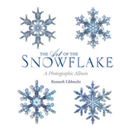 Art of the Snowflake (BOK)