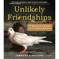 Unlikely Friendships (BOK)