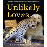 Unlikely Loves (BOK)