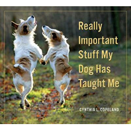 Really Important Stuff My Dog Has Taught Me (BOK)