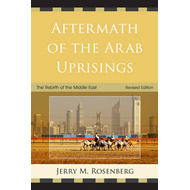 Aftermath of the Arab Uprisings: The Rebirth of the Middle East (BOK)