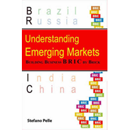 Understanding Emerging Markets: Building Business Bric by Brick (BOK)