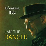 Breaking Bad: I am the Danger (BOK)