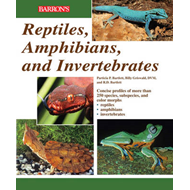 Reptiles, Amphibians and Invertebrates: An Identification and Care Guide (BOK)