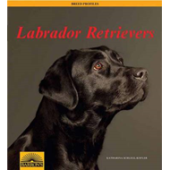 Labrador Retriever: Barron's Breed Profiles (BOK)