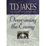 Overcoming the Enemy: the Spiritual Warfare of the Believer: The Spiritual Warfare of the Believer (BOK)