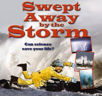 Swept Away by the Storm (BOK)