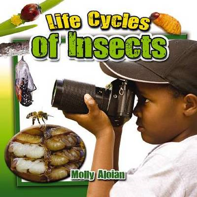Life Cycle of Insects (BOK)