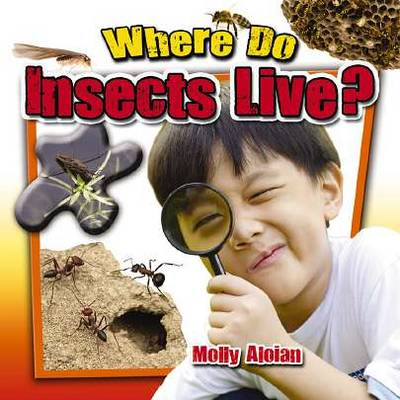 Where Do Insects Live? (BOK)