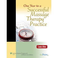 One Year to a Successful Massage Therapy Practice (BOK)