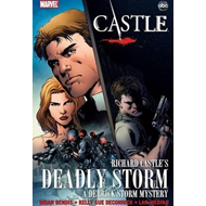 Castle: Richard Castle's Deadly Storm (BOK)