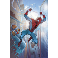 Amazing Spider-Man: Who am I? (BOK)