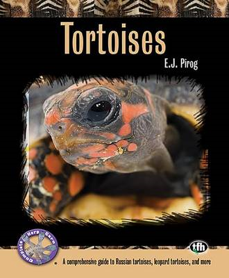 Tortoises: A Comprehensive Guide to Russian Tortoises, Leopard Tortises, and More (BOK)