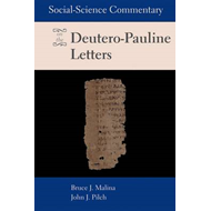 Social-science Commentary on the Deutero-Pauline Letters (BOK)