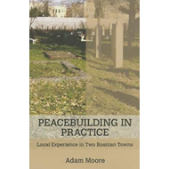 Peacebuilding in Practice: Local Experience in Two Bosnian Towns (BOK)