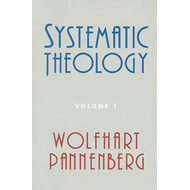 Systematic Theology, Volume 1 (BOK)