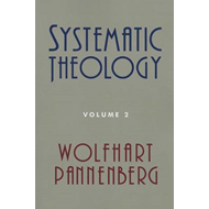 Systematic Theology, Volume 2 (BOK)