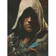 Assassin's Creed IV: Black Flag: The Complete Official Guide (BOK)