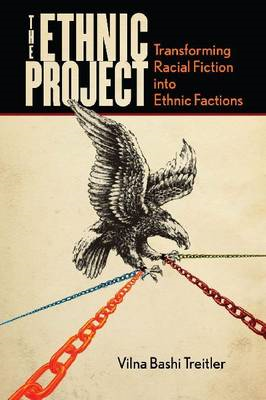 The Ethnic Project: Transforming Racial Fiction Into Ethnic Factions (BOK)