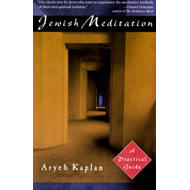 Jewish Meditation: A Practical Guide (BOK)