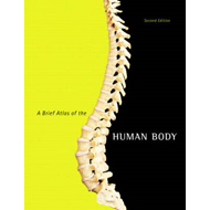 A Brief Atlas of the Human Body (BOK)