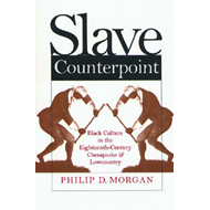 Slave Counterpoint: Black Culture in the Eighteenth-century Chesapeake and Lowcountry (BOK)