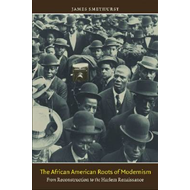 The African American Roots of Modernism: From Reconstruction to the Harlem Renaissance (BOK)
