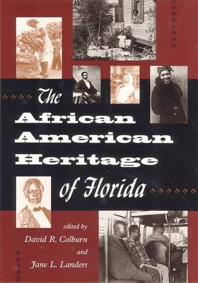 The African American Heritage of Florida (BOK)