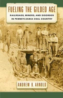 Fueling the Gilded Age: Railroads, Miners, and Disorder in Pennsylvania Coal Country (BOK)