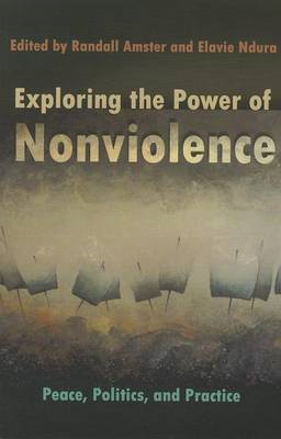 Exploring the Power of Nonviolence: Peace, Politics, and Practice (BOK)