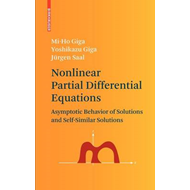 Nonlinear Partial Differential Equations: Asymptotic Behaviour of Solutions and Self-similar Solutio (BOK)