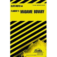 "Notes on Flaubert's ""Madame Bovary"" (BOK)"