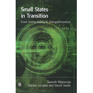 Small States in Transition (BOK)