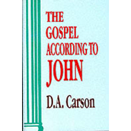 Gospel According to John (BOK)