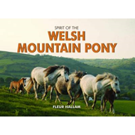 Spirit of the Welsh Mountain Pony (BOK)