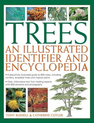 Trees: An Illustrated Identifier and Encyclopedia (BOK)