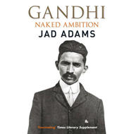 Gandhi: Naked Ambition (BOK)