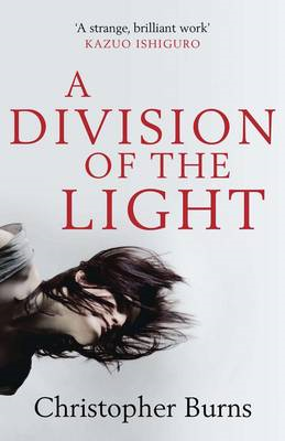 A Division of the Light (BOK)
