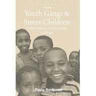 Youth Gangs and Street Children: Culture, Nurture and Masculinity in Ethiopia (BOK)