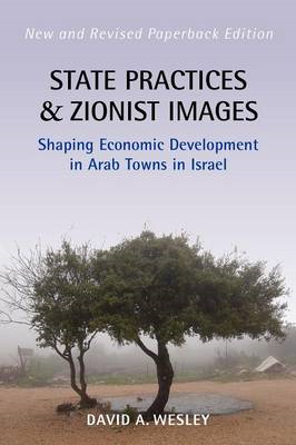 State Practices and Zionist Images: Shaping Economic Development in Arab Towns in Israel (BOK)
