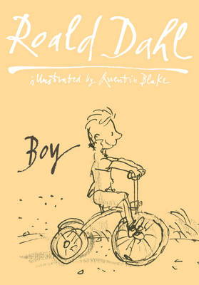Boy: Tales Of Childhood: Autobiography (BOK)