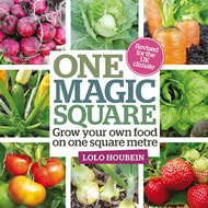 One Magic Square (BOK)